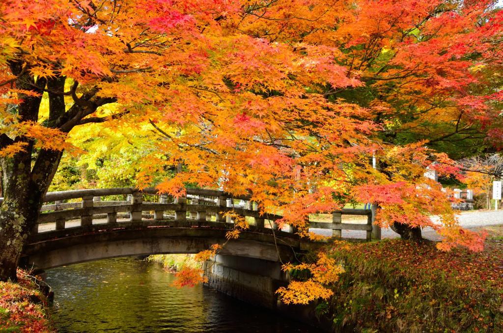 土津神社(橋)