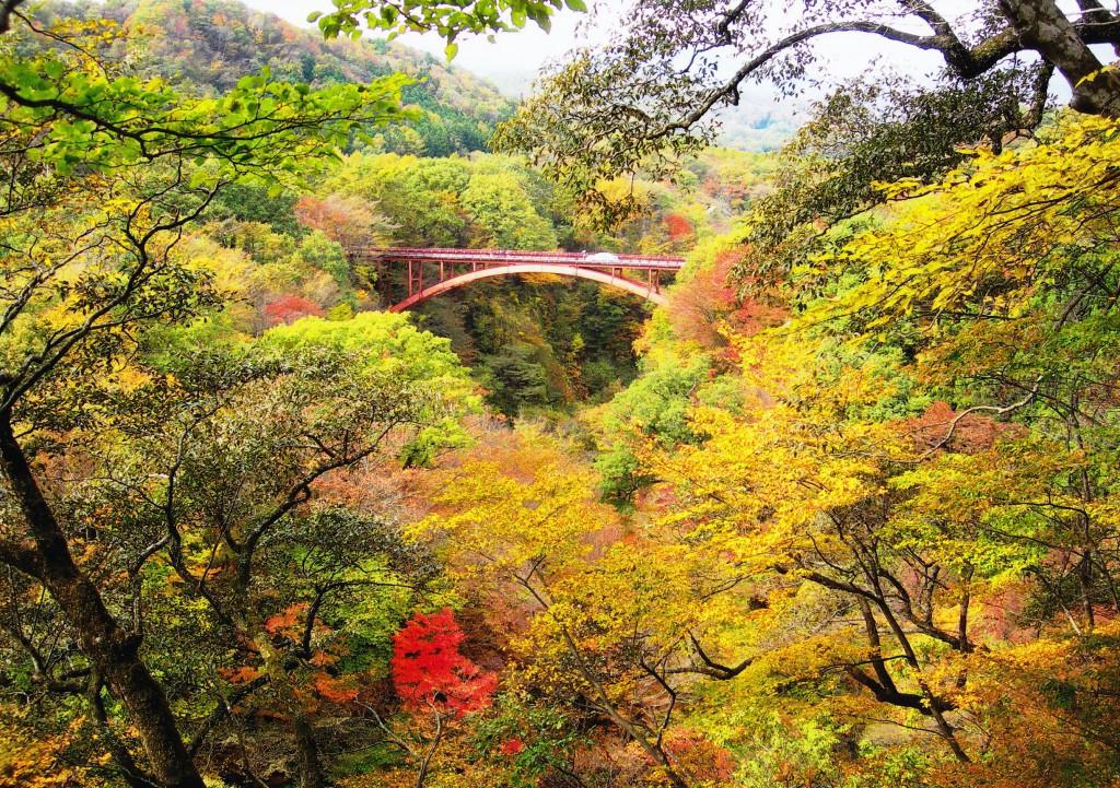 雪割橋・雪割渓谷(秋5)